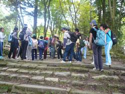 京都のどんどこプロジェクトイメージ